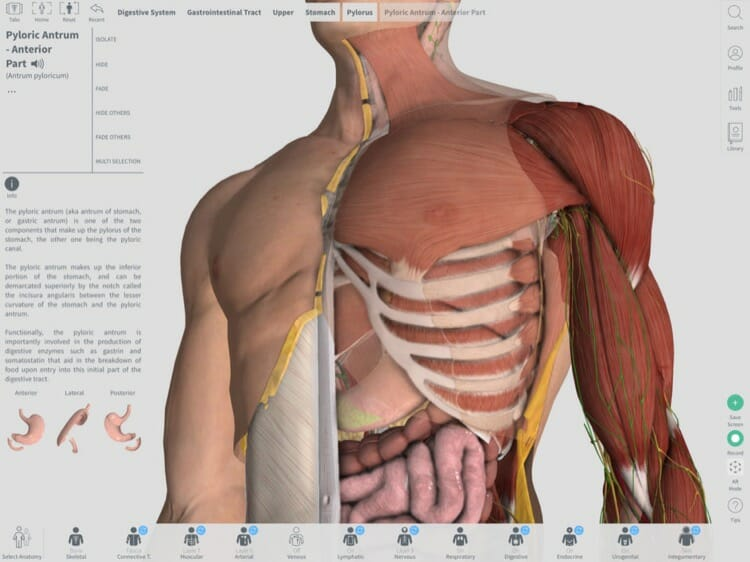 Complete Anatomy 2018 App for iPad Pro